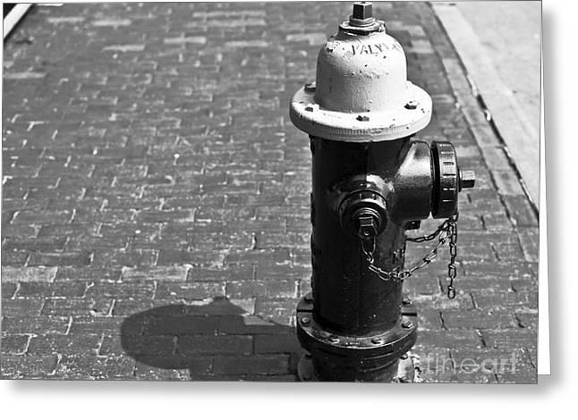 Boston Ma Greeting Cards - Hydrant Greeting Card by Jason Moynihan
