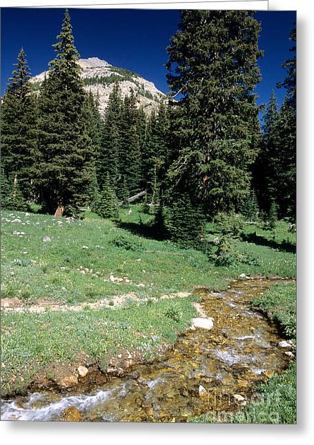 Idaho Scenery Greeting Cards - Hyndman Creek Greeting Card by William H. Mullins