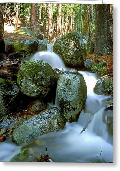 Tahoe National Forest Greeting Cards - I 50 Falls Greeting Card by Wes Jimerson