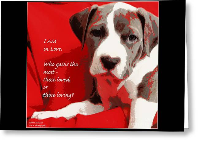 Framed Pit Bull Print Greeting Cards - I Am in Love Greeting Card by Bobbee Rickard