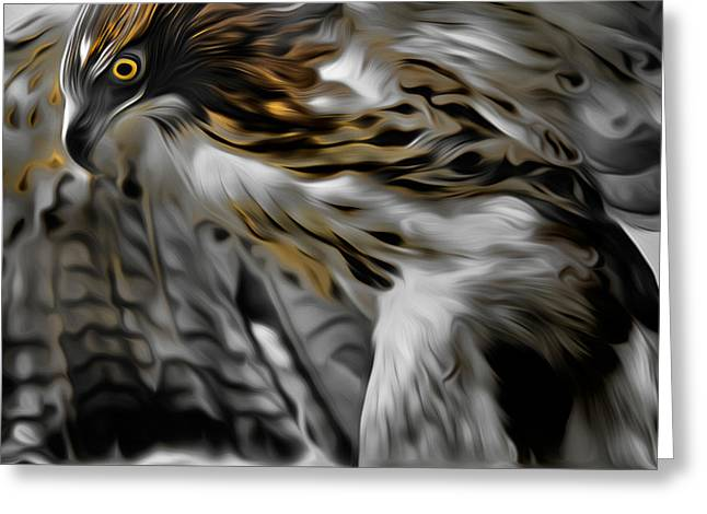 Redtail Hawks Greeting Cards - I am Redtail Greeting Card by Bill  Wakeley