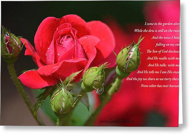 I Come To The Garden Alone Greeting Card by Lena Wilhite