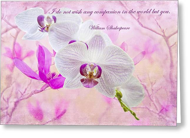 Pink And Purple Flowers Greeting Cards - I do not wish any companion but you Greeting Card by Bonnie Barry