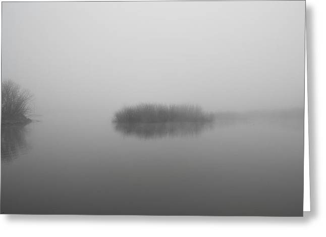 Wildlife Refuge. Greeting Cards - I dream of peace Greeting Card by Kunal Mehra