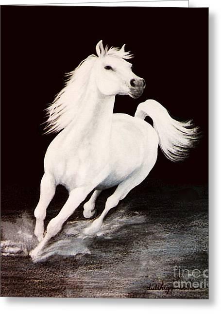 White Stallion Greeting Cards - I Dreamed Him White Greeting Card by DiDi Higginbotham