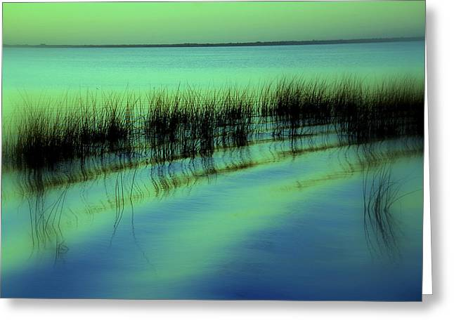 Blue And Green Greeting Cards - I had a dream Greeting Card by Susanne Van Hulst