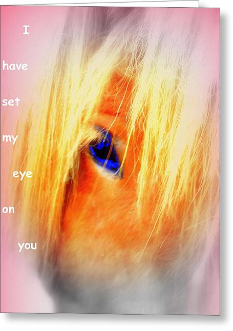 Sweating Photographs Greeting Cards - I have set my eye on you Greeting Card by Hilde Widerberg