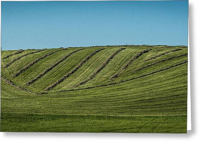 Farmers Field Greeting Cards - I Hear a Symphony Greeting Card by Melinda Martin