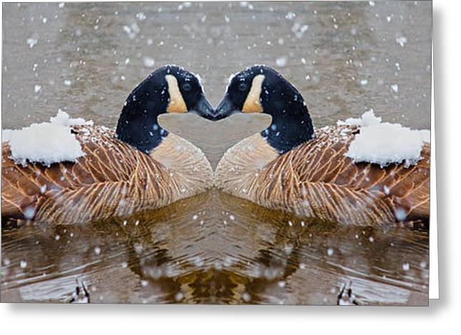 Geese Greeting Cards - I Heart You Greeting Card by Betsy C  Knapp