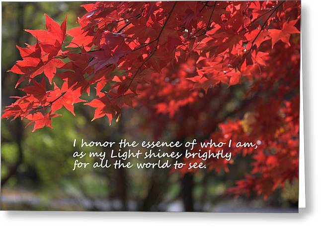 Affirmation Greeting Cards - I Honor The Essence of Who I Am Greeting Card by Patrice Zinck