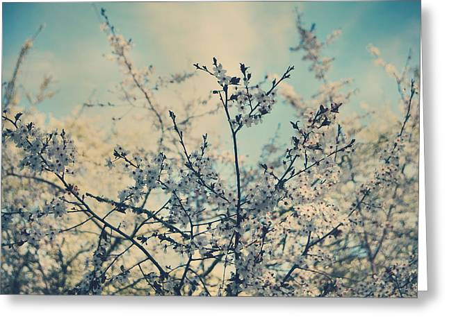 I Hope Spring Will Be Kind Greeting Card by Laurie Search