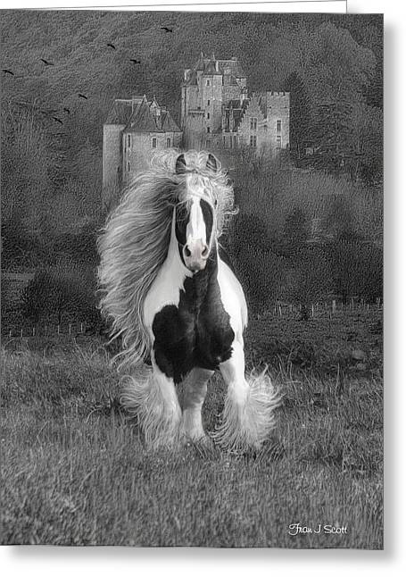 Gypsy Horse Greeting Cards - I hope youre in a Beautiful Place Greeting Card by Fran J Scott