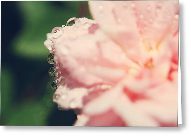 Dew Drop Greeting Cards - I Know I Love You Greeting Card by Laurie Search