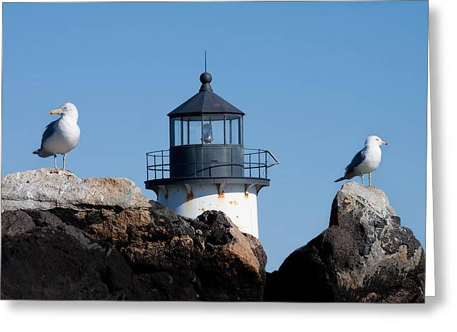 Solitude Greeting Cards - I know theres a lighthouse around here somewhere Greeting Card by Jeff Folger
