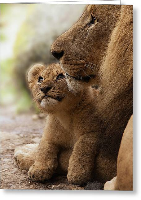 Empathy Greeting Cards - I love my Daddy Greeting Card by Christine Sponchia