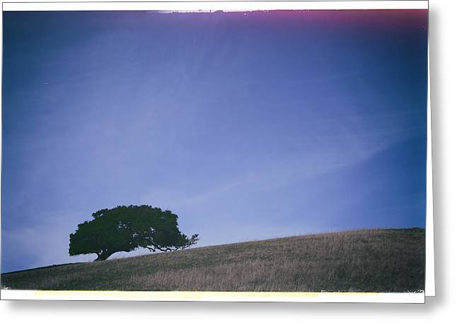 One Tree Greeting Cards - I Missed You Before I Even Met You Greeting Card by Laurie Search
