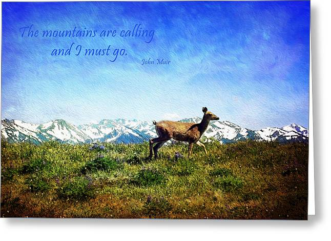 Snow-covered Landscape Greeting Cards - I Must Go Greeting Card by Kathy Bassett