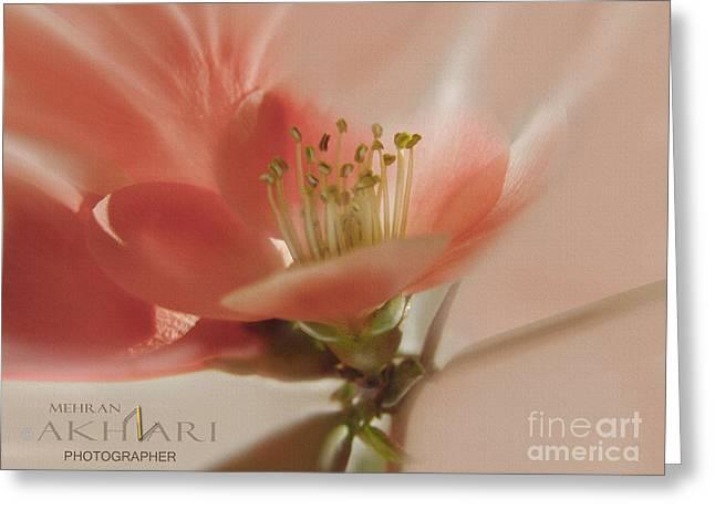 Mehran Akhzari Greeting Cards - I need to freedom  Greeting Card by Mehran Akhzari