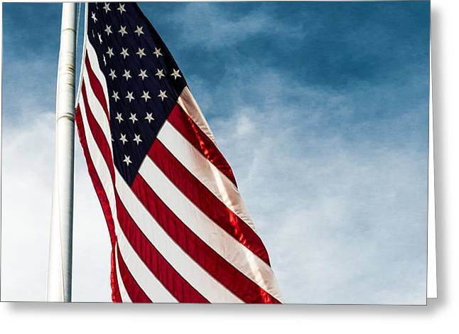 I Pledge Allegiance Greeting Card by Shelby  Young