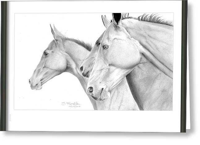 Lack And White Greeting Cards - I saw three horses galloping by Greeting Card by Stu Thompson