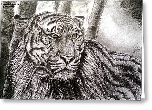 Bengal Drawings Greeting Cards - I See You Greeting Card by Shwetabh Suman