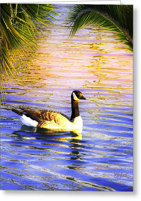 Reflection Of Trees In Water Greeting Cards - On Vacation Greeting Card by Music of the Heart