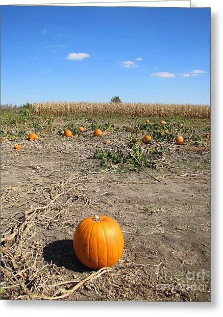 Harvest Time Greeting Cards - I Stand Alone Even In A Crowd Greeting Card by Minding My  Visions by Adri and Ray
