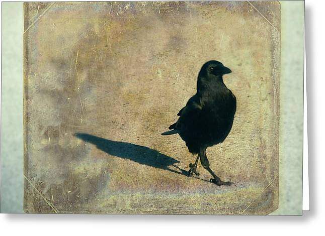 Corvus Greeting Cards - I Walk Alone Greeting Card by Gothicolors Donna Snyder