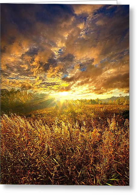 Fence Greeting Cards - I Walk In The Light Of A New Day Greeting Card by Phil Koch