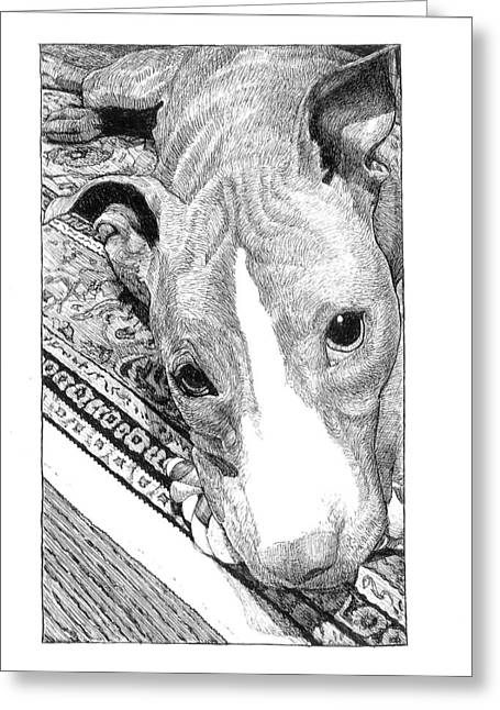 Rescue Drawings Greeting Cards - Wanna Play? Greeting Card by Lorraine Zaloom