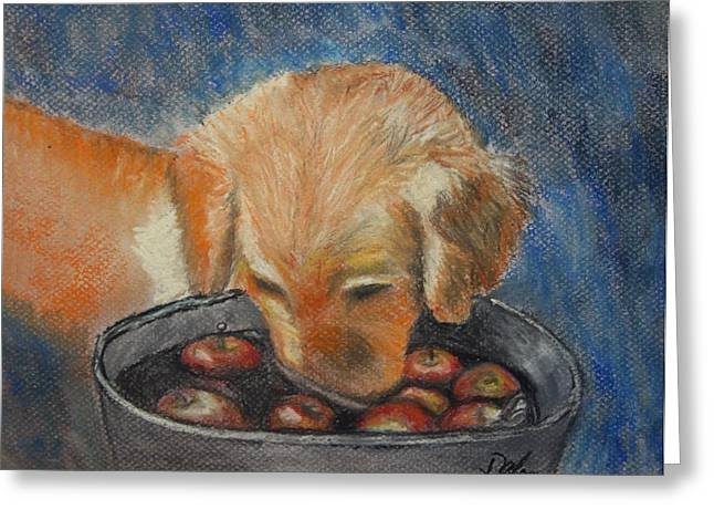 Puppies Pastels Greeting Cards - I Want One Greeting Card by Dale Bradley