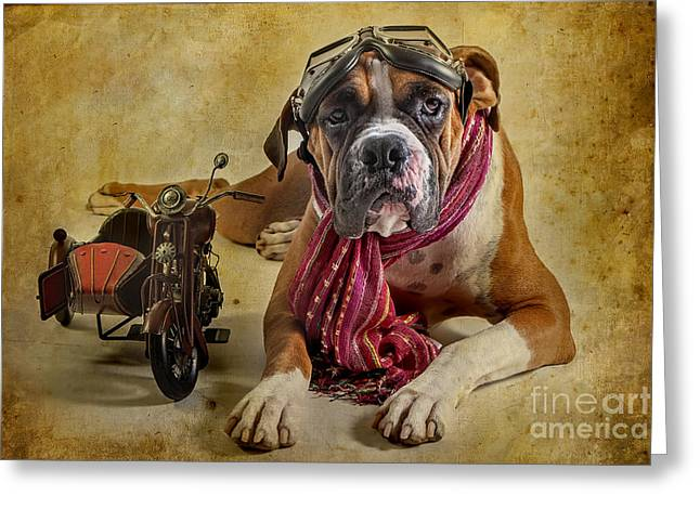 Funny Scooter Greeting Cards - I want to Ride Greeting Card by Domenico Castaldo