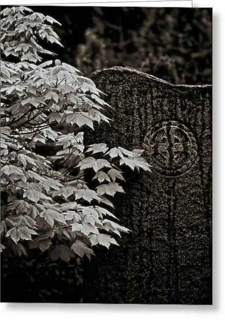 Headstones Greeting Cards - I Wave As I Pass Greeting Card by Odd Jeppesen