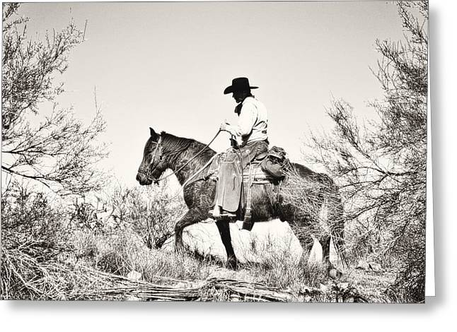 Cowboy Greeting Cards - I went up to the mountain... Greeting Card by Amanda Smith