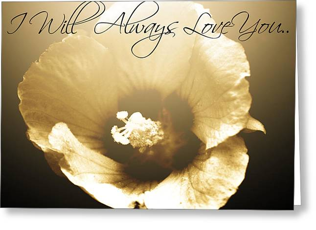 I Will Always Love You Greeting Cards - I Will Always Love You Greeting Card by Chastity Hoff