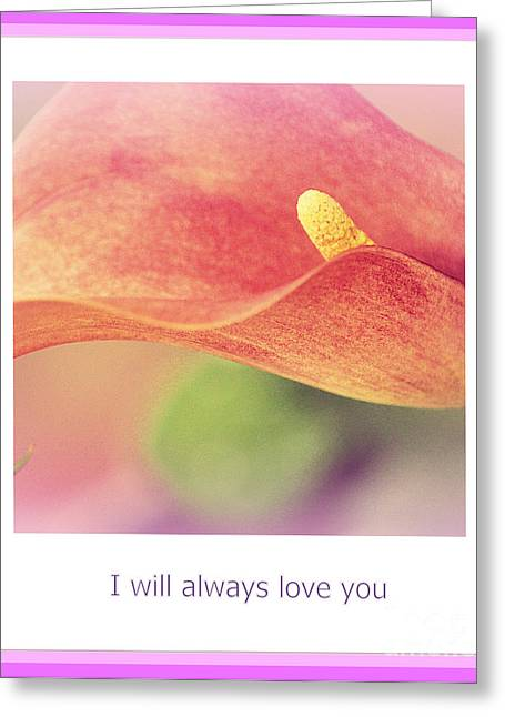 Flowers Greeting Cards - I Will Always Love You Greeting Card by Susanne Van Hulst