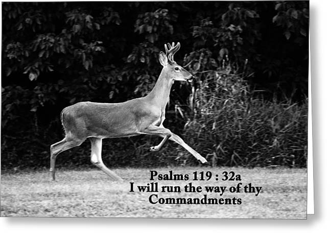 King James Version Greeting Cards - I Will Run Greeting Card by Lorna Rogers Photography