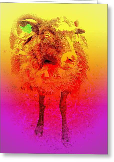Leading Sheep Greeting Cards - I will troll with you  Greeting Card by Hilde Widerberg