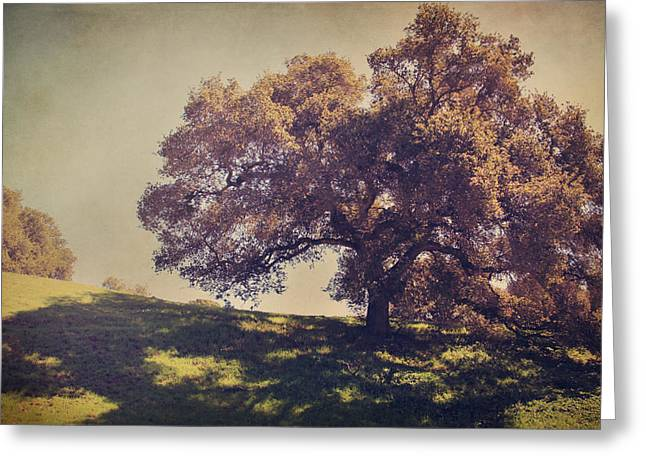 Textured Landscapes Greeting Cards - I Wish You Had Meant It Greeting Card by Laurie Search