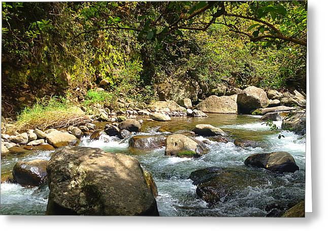 Lahaina Digital Greeting Cards - Iao Valley Stream 3 Greeting Card by Robert Pierce