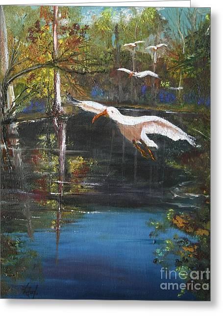 Bird Rookery Swamp Greeting Cards - Ibis Sanctuary Greeting Card by Kathelen Weinberg