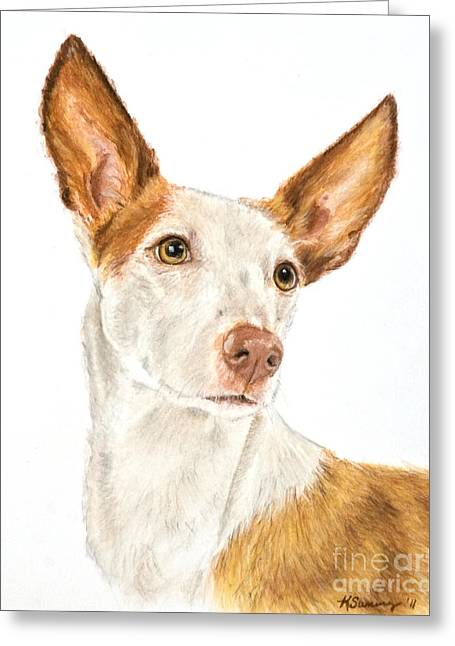 Pharaoh Drawings Greeting Cards - Ibizan Hound in Pastel Greeting Card by Kate Sumners
