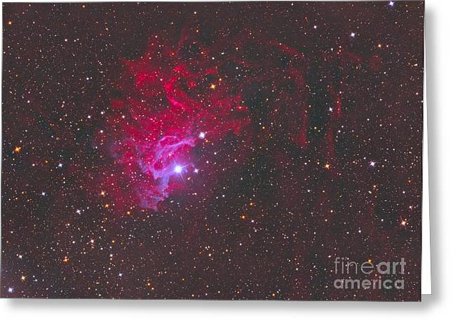 Interstellar Space Greeting Cards - Ic 405, The Flaming Star Nebula Greeting Card by Reinhold Wittich