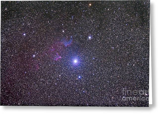Cassiopeia Constellation Greeting Cards - Ic 59 And Ic 62 Faint Reflection Greeting Card by Alan Dyer