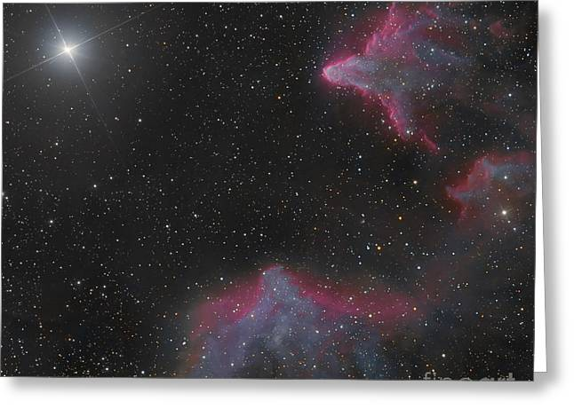 Interstellar Space Greeting Cards - Ic 59 And Ic 63 In Cassiopeia Greeting Card by Bob Fera
