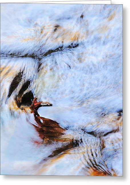 Abstract Water And Fall Leaves Greeting Cards - Icarus Greeting Card by Elzbieta Weron
