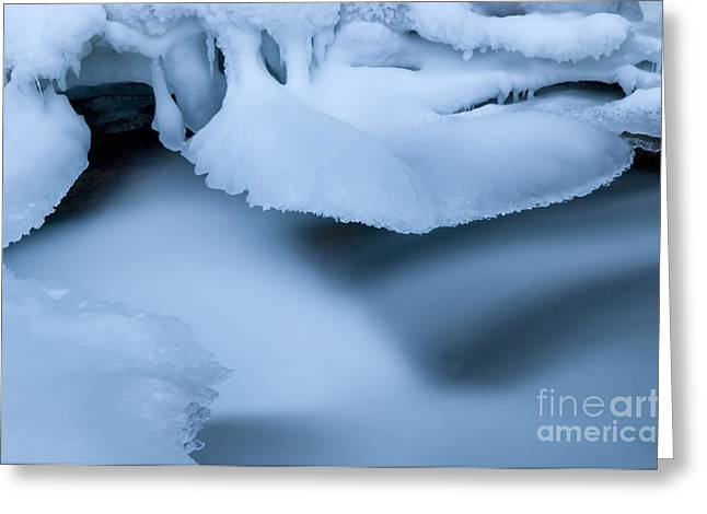 Ice 19 Greeting Card by Bob Christopher