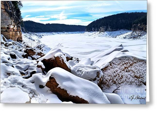 Vinter Greeting Cards - Ice Age Greeting Card by Lj Lambert