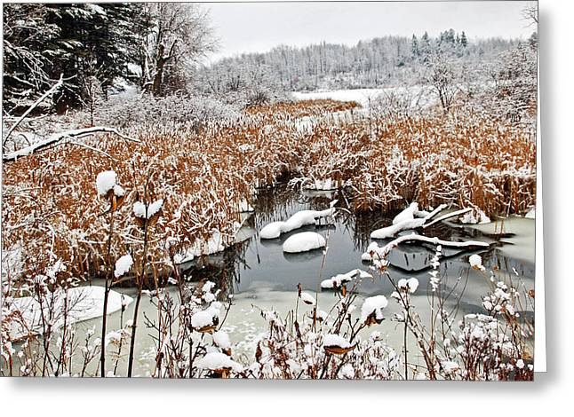 March Greeting Cards - Ice and Snow 1 Greeting Card by Aimee L Maher Photography and Art