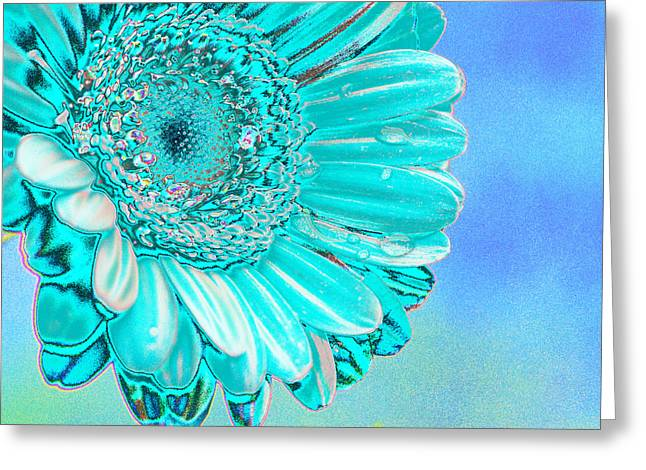 Daisy Digital Greeting Cards - Ice blue Greeting Card by Carol Lynch